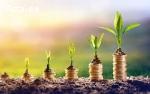 Ищем бизнес-проекты для инвестиций