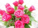 Красивые цветы, открытки с цветами